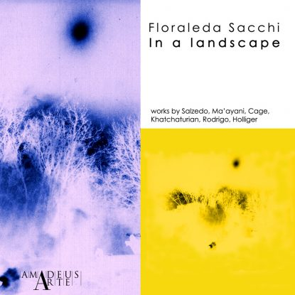 in a landscape front cover